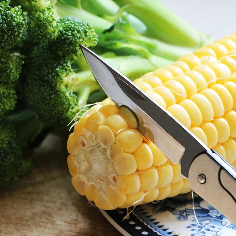Free shipping Stainless steel fruit knife pocket folding key knife fruit sharpener kitchen tool small tool