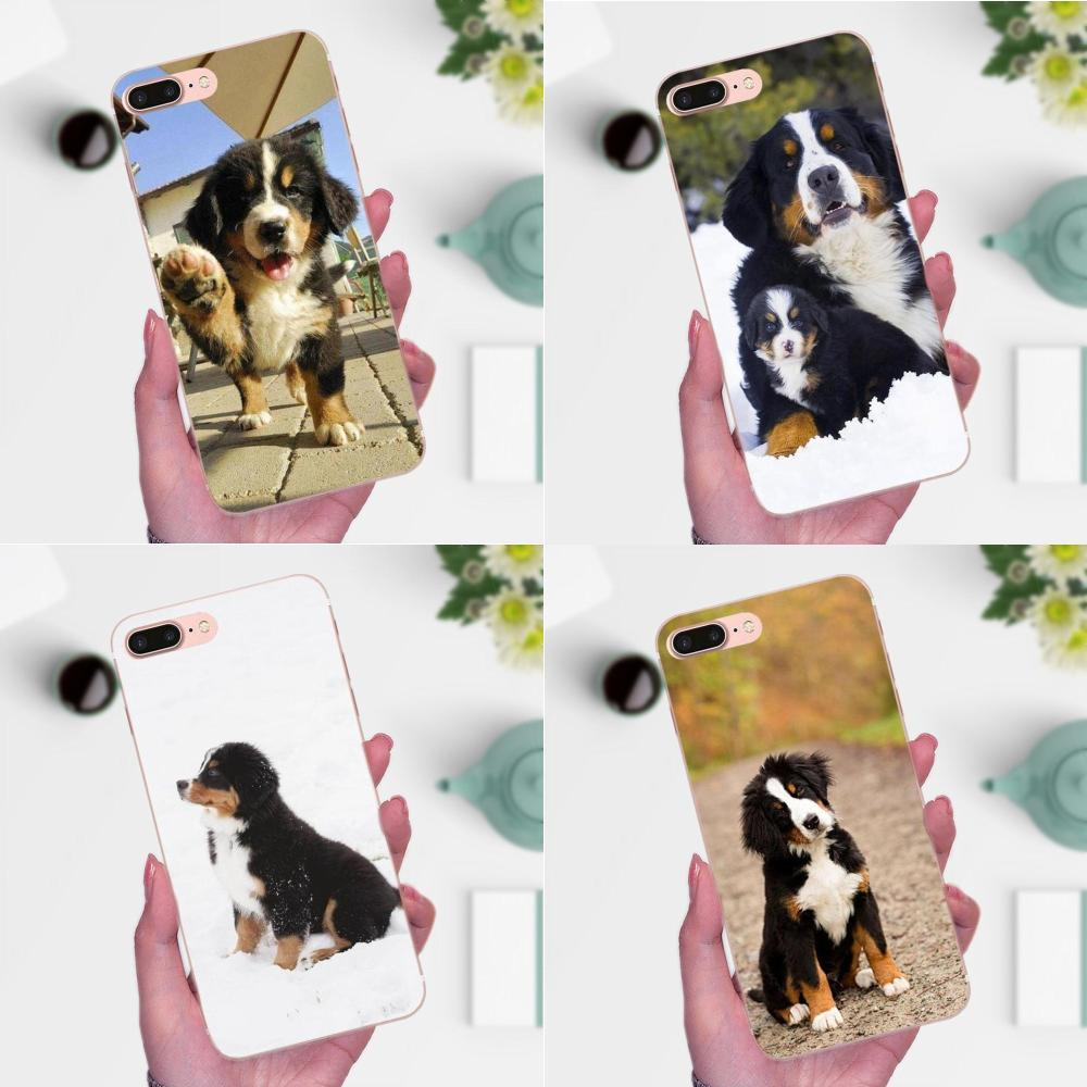 Чехол Berner Sennen Dog Bernese Mountain для LG Nexus 5 5X G2 G3 mini spirit G4 G5 G6 K4 K7 K8 K10 2017 V10 V20 V30 Stylus