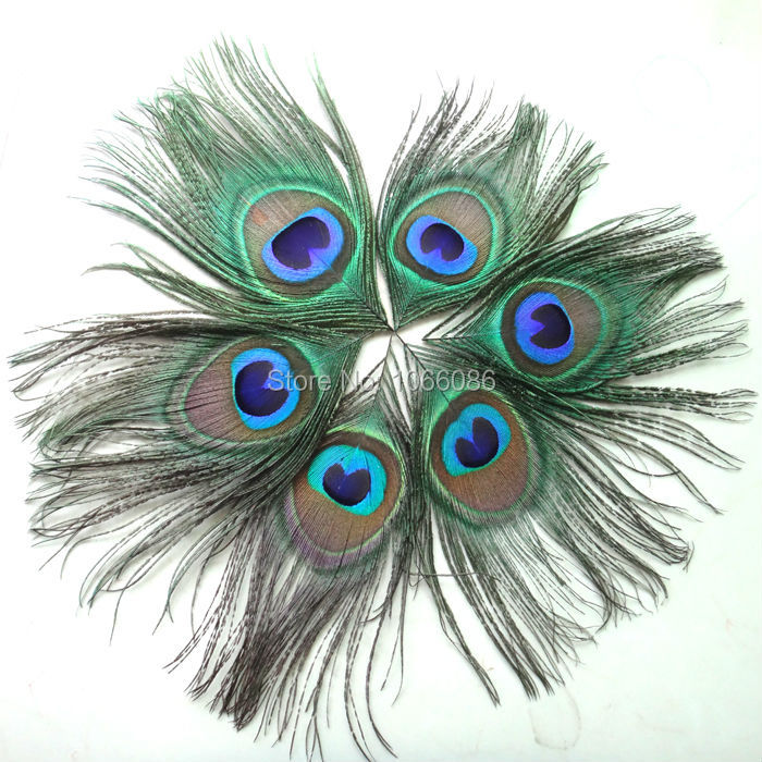 FREE SHIPPING! 2000pcs/lot Beautiful Peacock feathers for craft Peacock Feather Eyes feather accessories