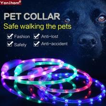 Collier de chien à USB Rechargeable   Dispositif USB de sécurité Rechargeable, collier de chien, lumière de collier de chien, lumière USB Rechargeable, nuit