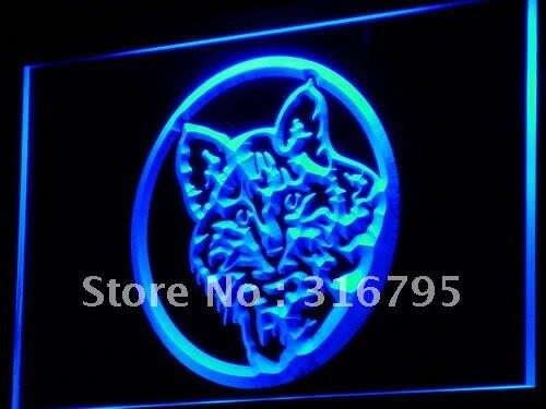I698 gato Kitty tienda de mascotas decoración de pantalla letrero de neón con luz LED interruptor de encendido/apagado 20 + colores 5 tamaños
