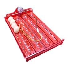 Lot de 1 incubateur dœufs 32-40   Accessoires pour incubateur, tourner le plateau à œufs, canard, oie, volaille, moteur de 110V/220V/DC12V