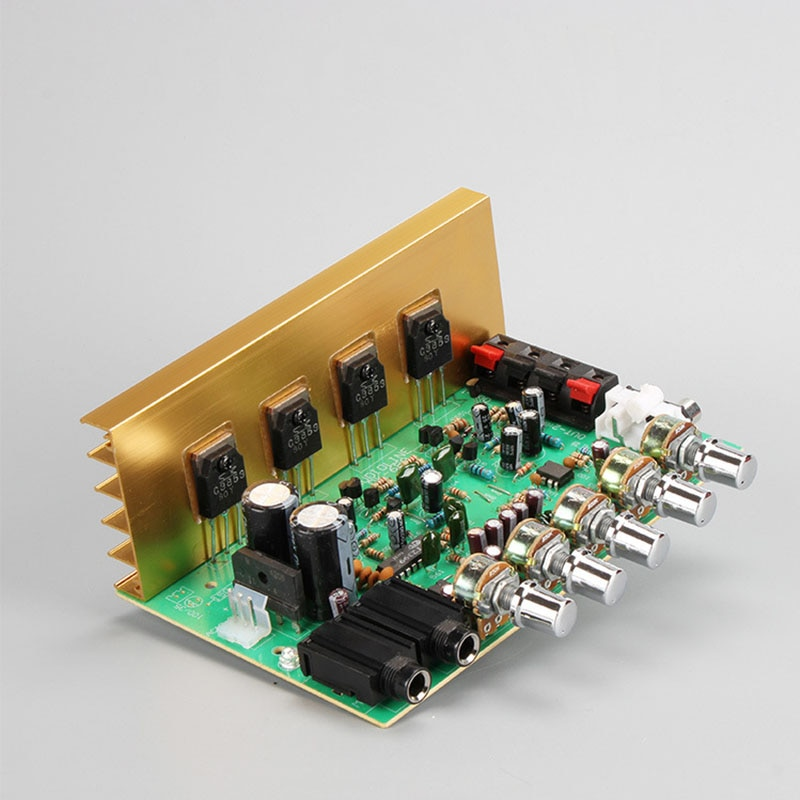 2x100W Stereo Big Power Karaoke Amplifier Board ECHO Adjust Support 2 6.5mm Microphone Home Audio Amplificador