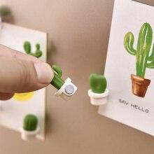6 шт. Leuke Vetplant Magneet Knop Cactus Koelkast Bericht наклейка Magn Note белая доска Koelkast для домашнего офиса