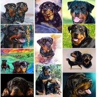 Rottweiler     peinture en diamant 5d chien 3d  broderie  point de croix  animal de compagnie mignon  strass  decoration de la maison