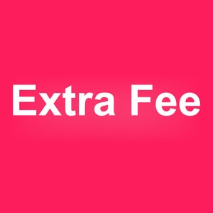 Extra Fee / Price difference for customer (according to discussion)