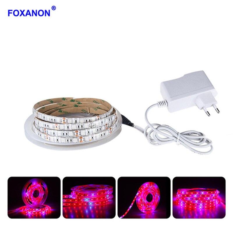 3M 5M LED Grow luces 5050 LED tira de luz de espectro completo LED Fitolampy cc 12V tira de LED con adaptador de corriente + interruptor