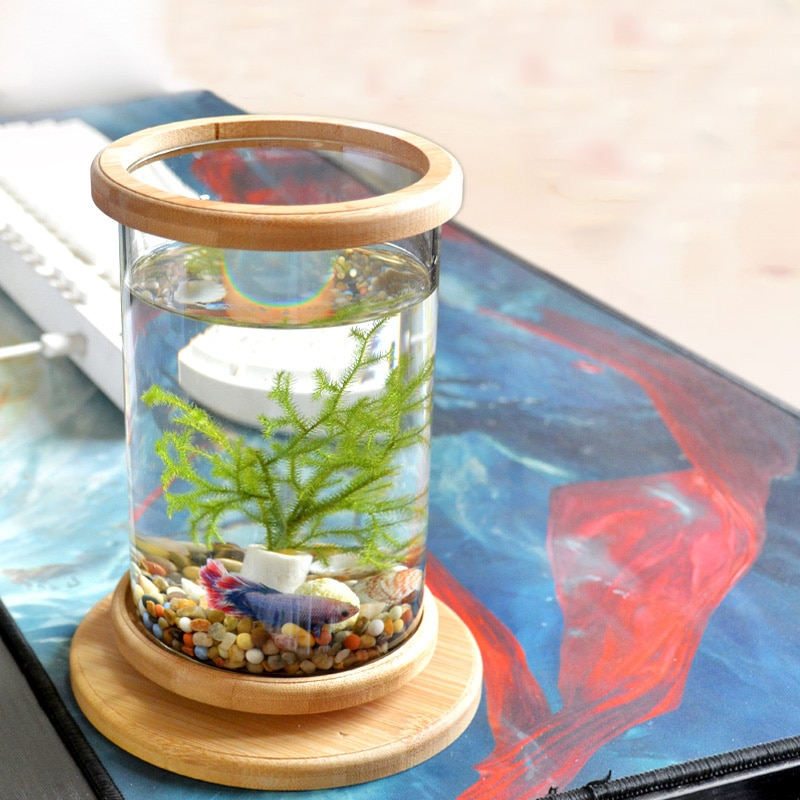 1 Uds., Betta pecera de vidrio, Base de bambú, miniaccesorios de decoración, Bol giratorio, accesorios de Acuario, 1 Uds