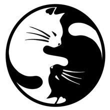15*15CM Yang Ying Katzen Mode Cartoon Auto Aufkleber Fenster Dekoration Persönlichkeit Vinyl Aufkleber C4-0437