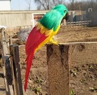 beautiful feathers parrot bird about 22cm artificial bird handicraft prophome garden decoration gift p1908