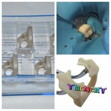 Dental Kerr pinza suave Universal caucho Dam diversos dientes molares polímero