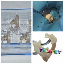 Kerr dental macio braçadeira universal borracha dam sundries molar dentes polímero