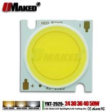 10Pcs High Power LED Chip 24W 30W 36W 40W 50W 2525/21mm 17x34mil Epistar SMD COB diode LED Bulb Ceiling spotlight DownLight Lamp