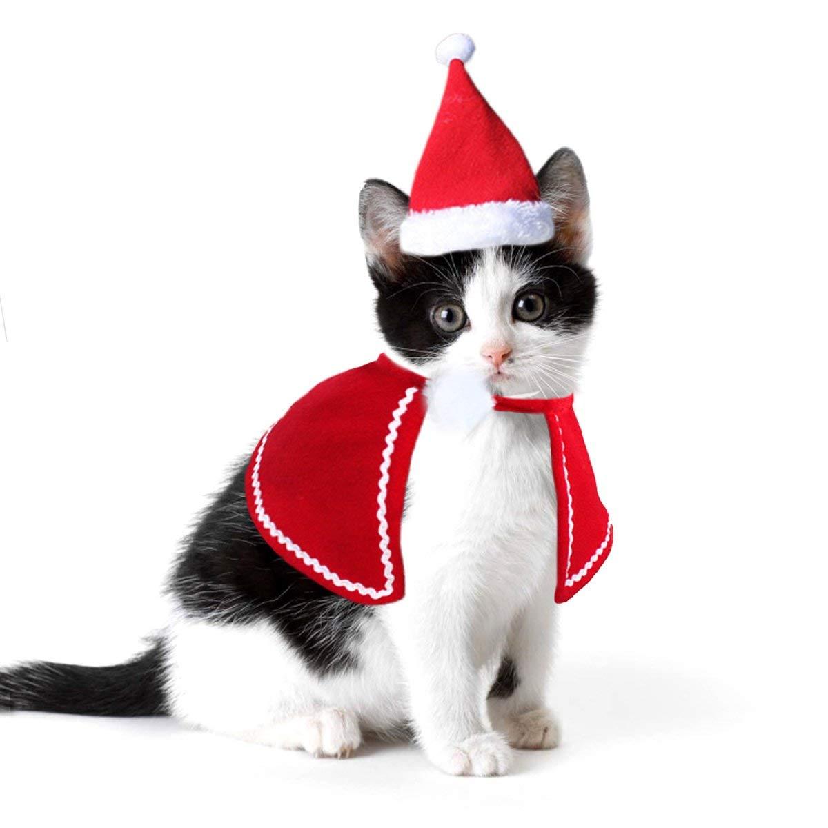 Perro gato tapas Pet Santa sombrero de cumpleaños, bufanda y Collar con lazo corbata traje de Navidad para cachorro gatito pequeño gatos, perros, mascotas accesorios