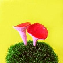 Autocollants miniatures champignons rouges/arbre de noël   Couronne, jardin de fée, terrarium, jardin pastoral, balcon, L042, jouet, modèle
