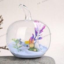 Vase en verre transparent en forme de Apple   Fait à la main, récipient de fleur de radis vert hydroponique, réservoir de plante deau, Micro outil de vue, décoration de la maison