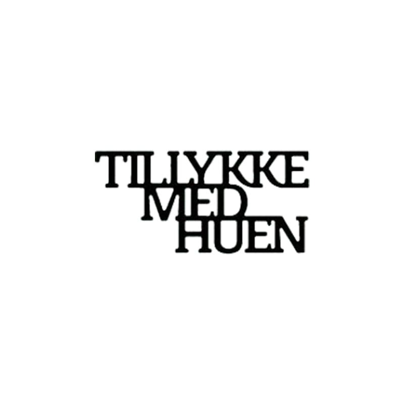 """Tillykke Med Huen"" ""Ariets Student"" Danish Words Metal Cutting Dies for DIY Craft Making Card Album Embossing Stencils New 2019"