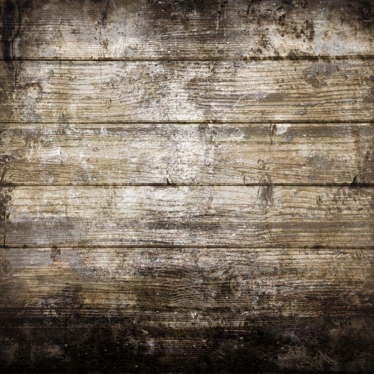 LIFE MAGIC BOX vinilo foto telón De fondo estudio Foto fondo Toile De Fond Pour Photographe tablero grueso GCNTZC-063