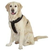 M/L/XL Pet Harness Nylon Adjustable Safety Control Restraint Cat Puppy Dog Harness Soft Walk Vest Large Dog Blue Red Black
