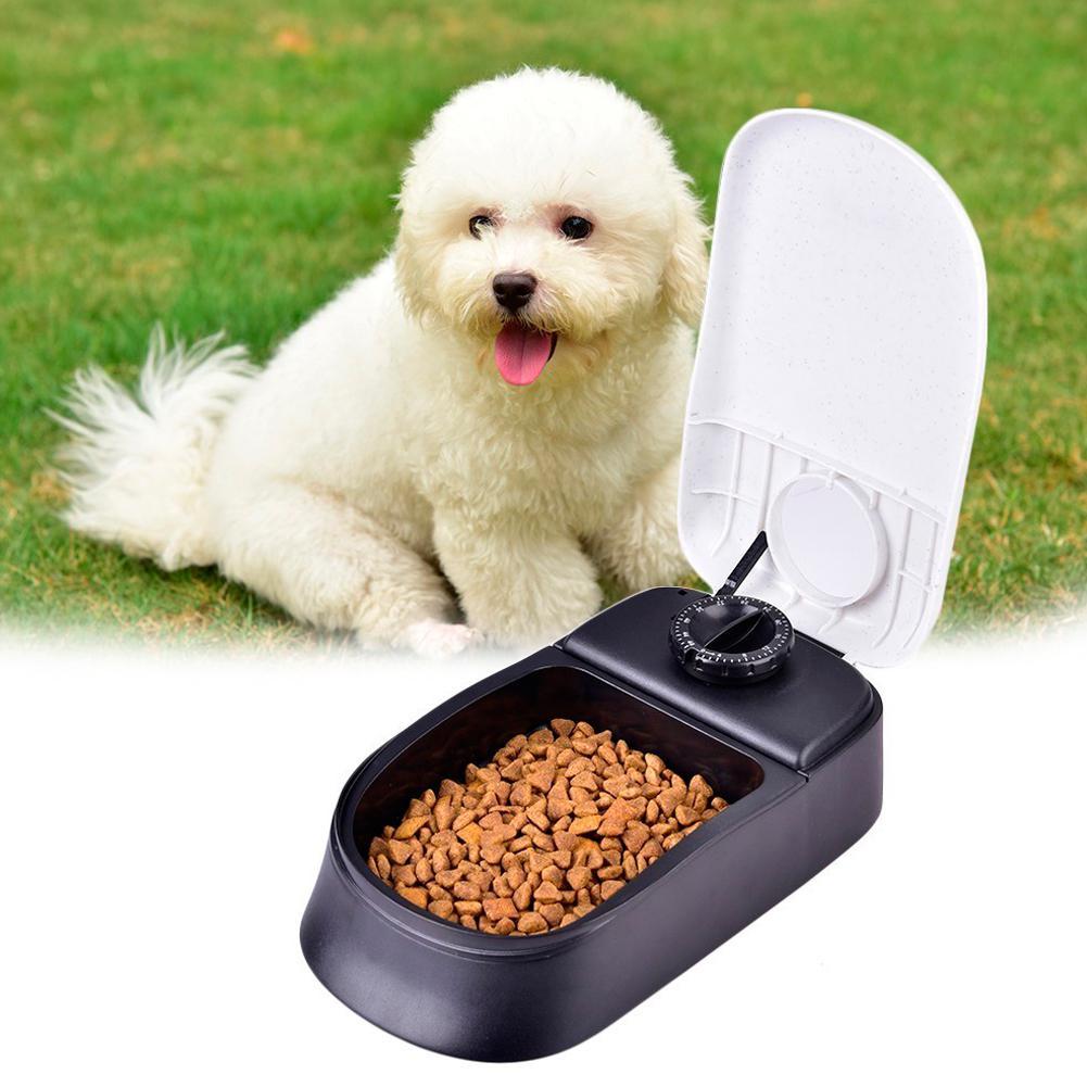 Cão de estimação cronometragem alimentador automático gato cão dispensador de alimentos secos tigela prato cão água potável gato alimentação grande capacidade dispensador pet
