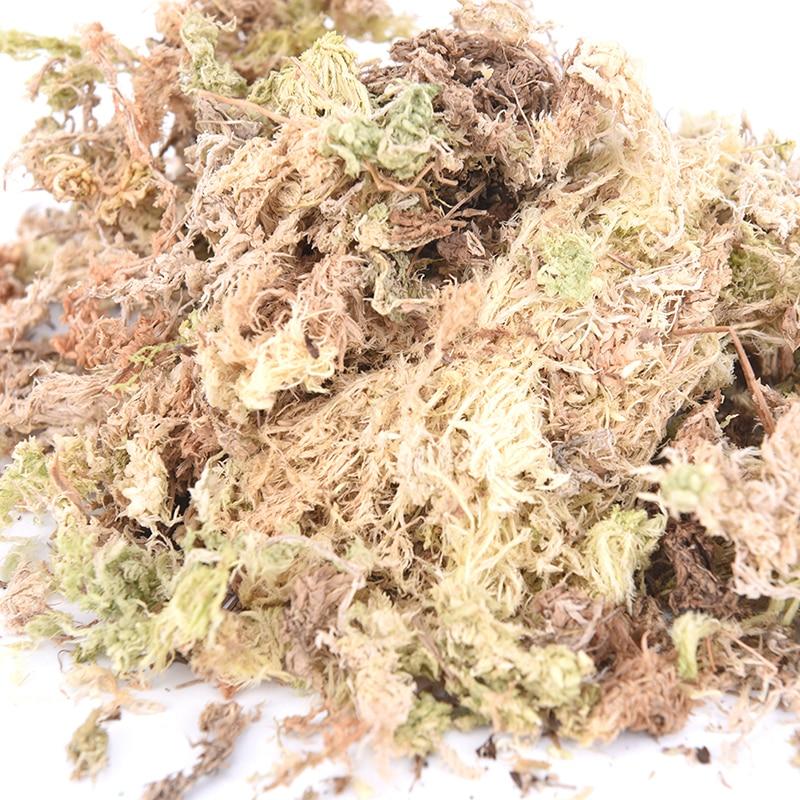 New 6L/12L Sphagnum Dry Moss Garden Moisturizing Nutrition Organic Fertilizer For Orchid Phalaenopsis Musgo Sphagnum