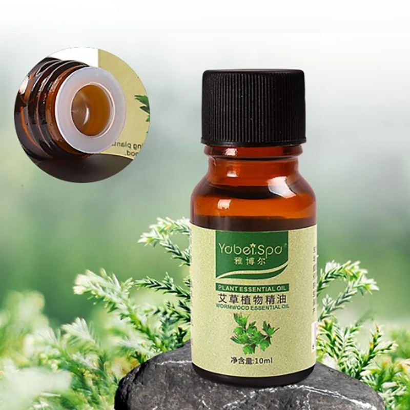 Aceite Esencial para raspar plantas, masaje de pies compuesto, sauna de belleza, aceite esencial de ajenjo para masaje, 10ml, venta al por mayor