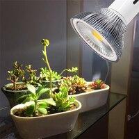 one set include holder Full-spectrum LED plant growth bulbs home meaty plant fill light like imitation sun light meat fill light