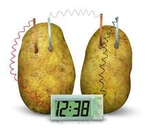 Часы картофель, новый экологичный учебный проект, Набор для экспериментов, лабораторная домашняя школьная игрушка, забавные Обучающие поде...