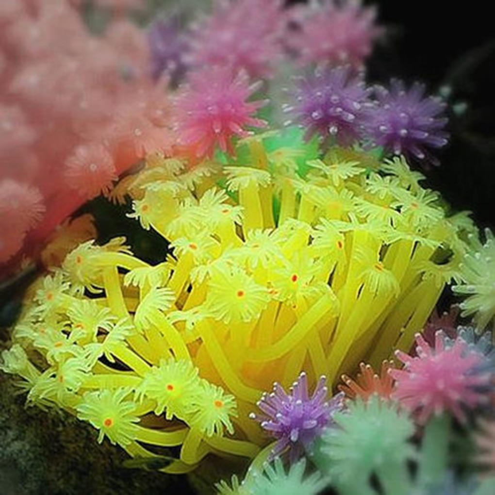Искусственный морской анемон украшение для аквариума имитация украшения из кораллов подводный водный Декор для аквариума украшение для аквариума