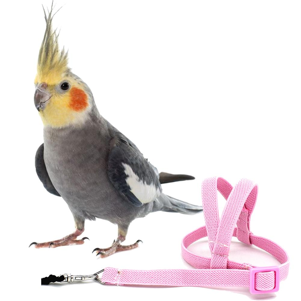 Hot Sale Anti-bite Flying Training Rope Parrot Bird Pet Leash Kits Ultralight Harness Leash Soft Por