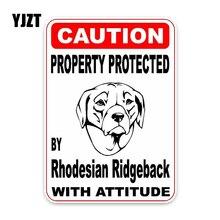 YJZT-autocollant pare-chocs de fenêtre   11.4*16CM, protection de propriété par la décoration voiture chien Ridgeback,