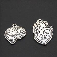 5 pièces couleur argent biologie cerveau et coeur breloques médecine organes pendentif colliers bijoux anatomiques fournitures
