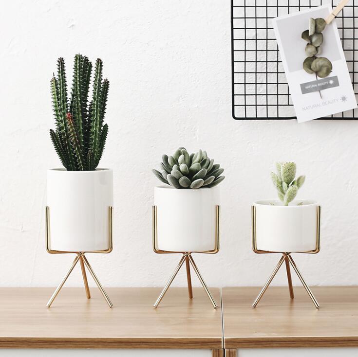 TECHOME 2021 Fashion Style Ceramic Flower Pot Elegant Gold Iron Frame Flower Plant Holder Succulent Pot Office Desktop Ornament