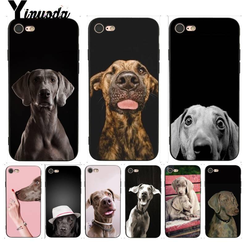 Yinuoda para o iphone 7 6 x caso weimaraner cão arte perfeita capa de telefone para o iphone 7x6s 8 plus x 5 5S se xr xsmax