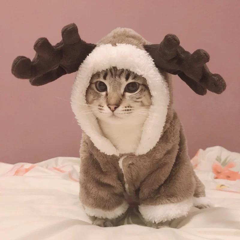 Winter Katze Kleidung Warme Fleece Pet Kostüm Für Kleine Katzen Kätzchen Overalls Kleidung Katze Mantel Jacke Haustiere Hund Kleidung Katze-Kleidung    -