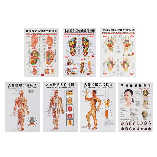 3 uds/7 Uds masaje con acupuntura, mapa de puntos de acupuntura en chino e inglés, carteles de puntos de acupresión, mapa de pared para enseñanza médica