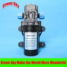 1 l/min 12V DC 15W 1Mpa bomba de alta presión niebla spray maker bomba de diafragma pulverizador eléctrico