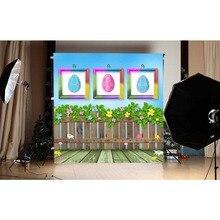 Clôture en bois imprimé bébé décors pour Studio Photo plancher en bois oeufs de pâques Photo mur Photo fond pour photographie nouveau-né