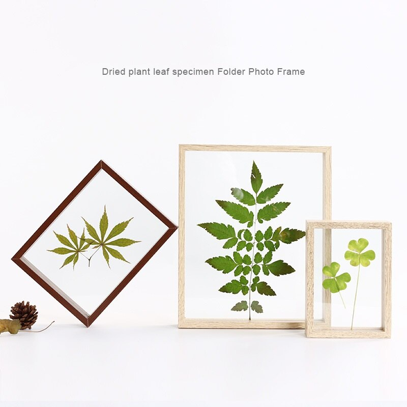 5/7/8/10 Inch Einfache Pflanzenproben Doppelseitige Glas Rahmen Massivholz Kreative Decor Rahmen DIY Kunst bild Foto Rahmen Geschenke