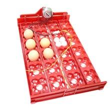Incubateur à œufs de bricolage   96 œufs, incubateur doiseaux, plateau à œufs, automatique 24 oeufs, incubateur de caille, outil dincubation de perroquets, taille 43x28 cm