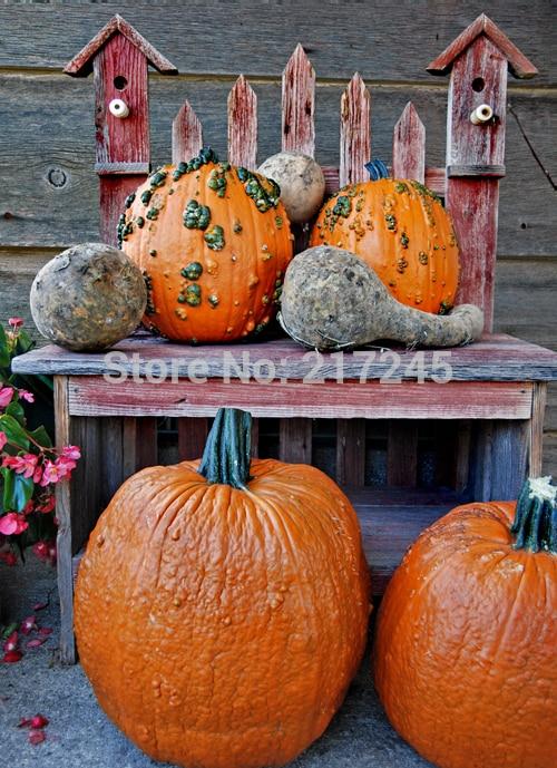 Art Fabric Photography Backdrop pumpkin Custom Photo Prop backgrounds 5ftX7ft D-1886