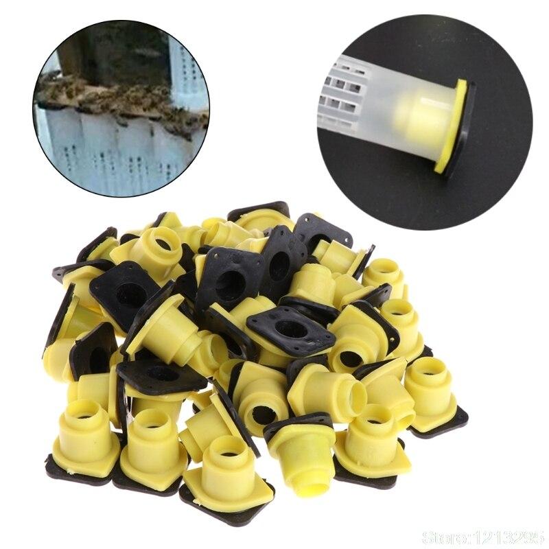 50 Uds caja de jaula de rey Bee Queen, accesorios antimordida, equipo, herramientas para insectos, Herramientas de apicultura alimentador de abejas W215