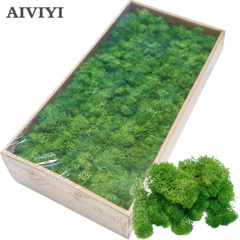 High quality artificial green plant immortal fake flower Moss grass home living room decorative wall DIY flower mini accessories