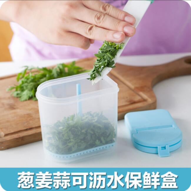 Enfriador de agua multiusos de ajo jengibre Flip selled 2 unids/lote caja de almacenamiento de plástico condimento de jengibre