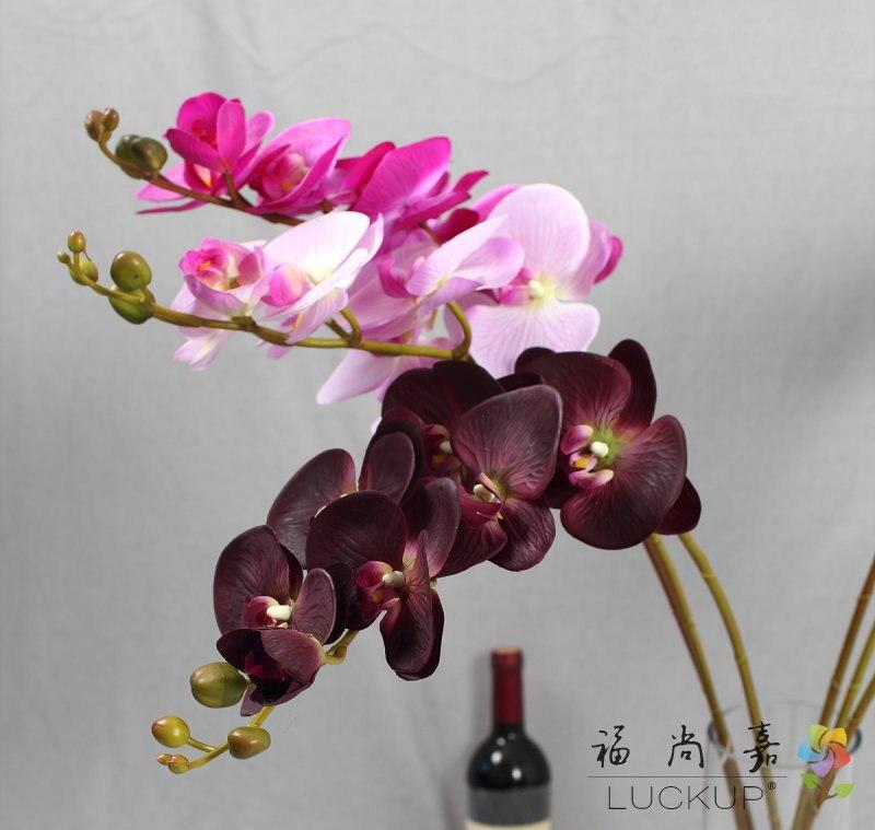1 стебель настоящий сенсорный латекс искусственный Моль Орхидея Бабочка Орхидея цветок для нового дома свадьбы фестиваль украшения F472