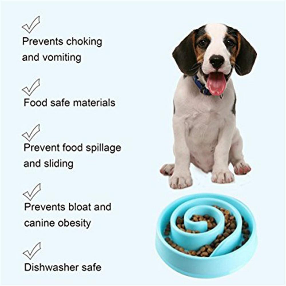 Animalele de companie care hrănesc bolurile de hrană ale - Produse pentru animale de companie - Fotografie 2