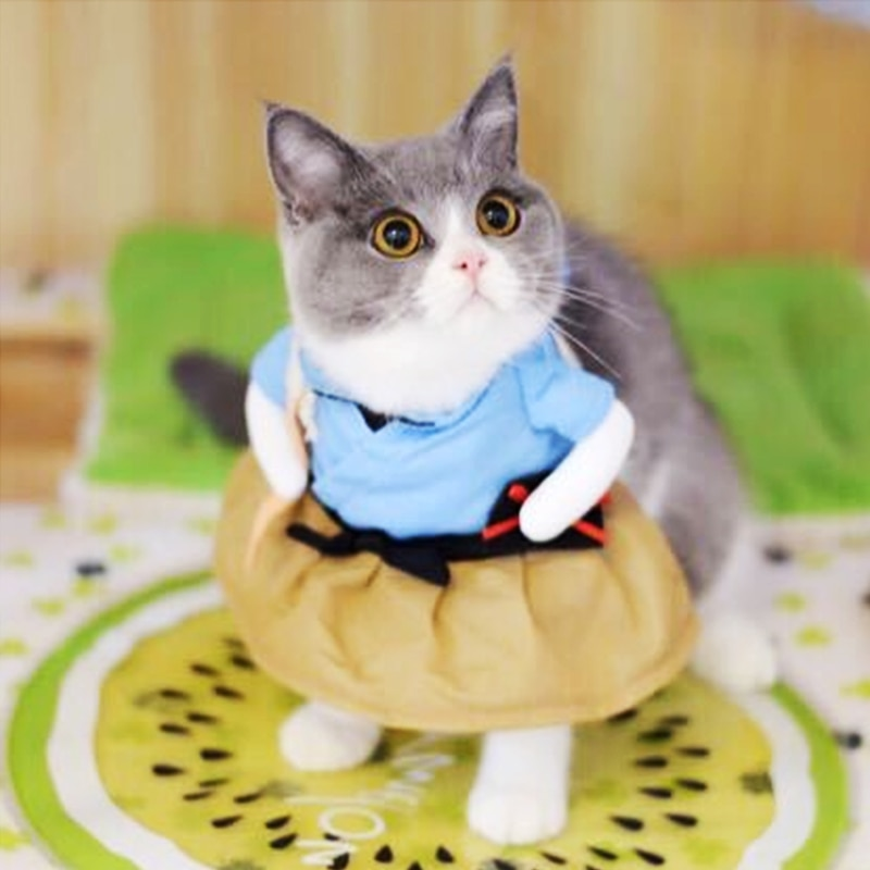 Ropa bonita para mascotas, ropa para gatos, disfraz divertido para gatos, ropa para perros y gatos, ropa para gatos, ropa para perros, ropa de algodón Apparel30