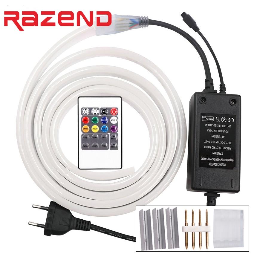 RGB LED Neon Light 220V 2835 120Leds/m Waterproof Flex led strip 1m 5m 10m 20m 100m + RGB remote controller/Power Plug +clip kit