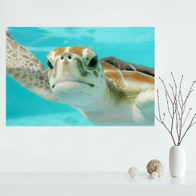 2020 novo produto sea turtle animal poster personalizado cetim cartaz de impressão de tecido de pano de parede cartaz de impressão de tecido de seda