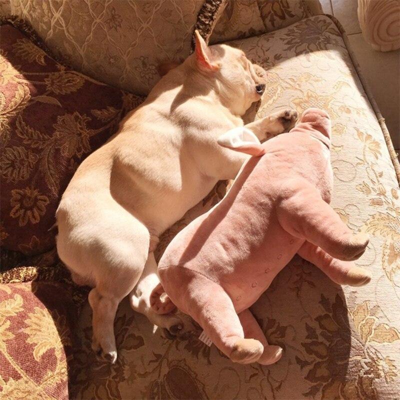 Juguetes De Mascotas de perros que acompañan a los cerdos dormidos, juguetes cálidos de felpa suave de algodón para dormir para cachorros de perros para masticar perros, juguetes suministros para mascotas